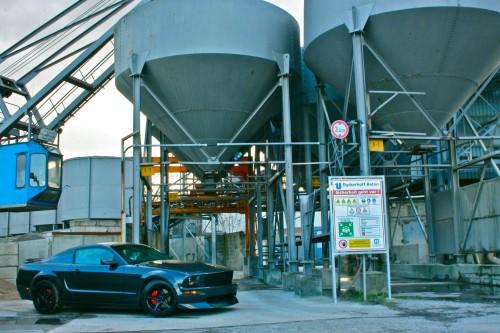 Mustang3.jpg